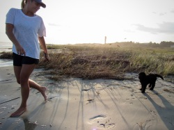 New dog owner, Julie tried to get puppy Harper into the water