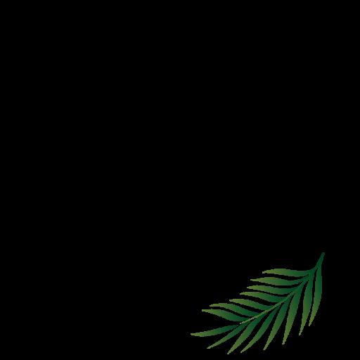cropped-bare-vita-logo-2-round.png